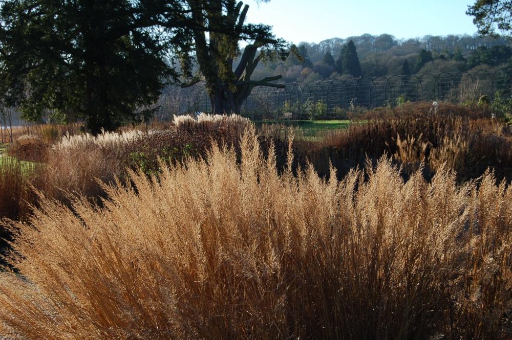 The Gardens of Piet Oudolf (6/6)