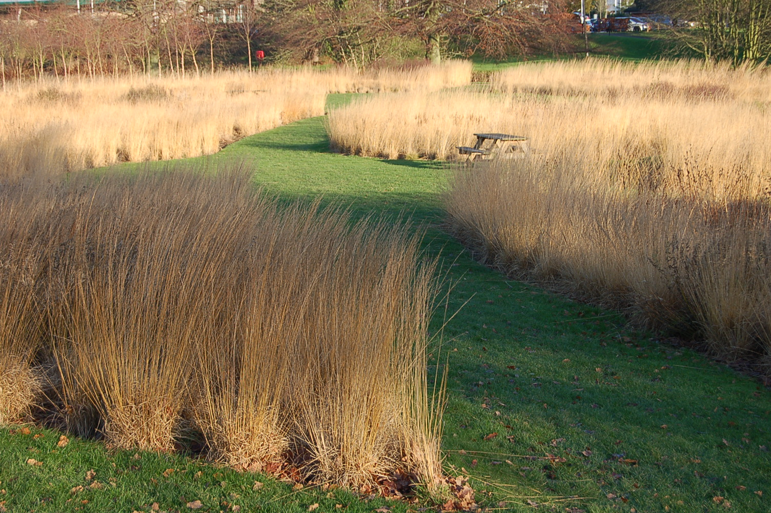 The gardens of piet oudolf greenbenchramblings for Designing with grasses