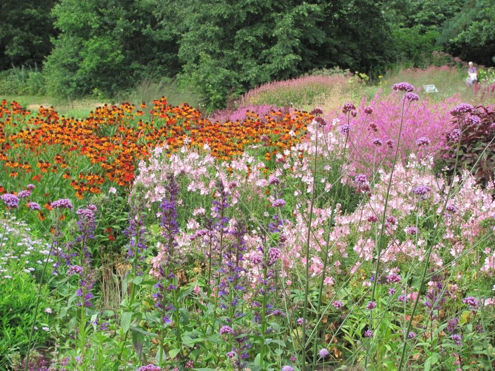 The Gardens of Piet Oudolf (3/6)