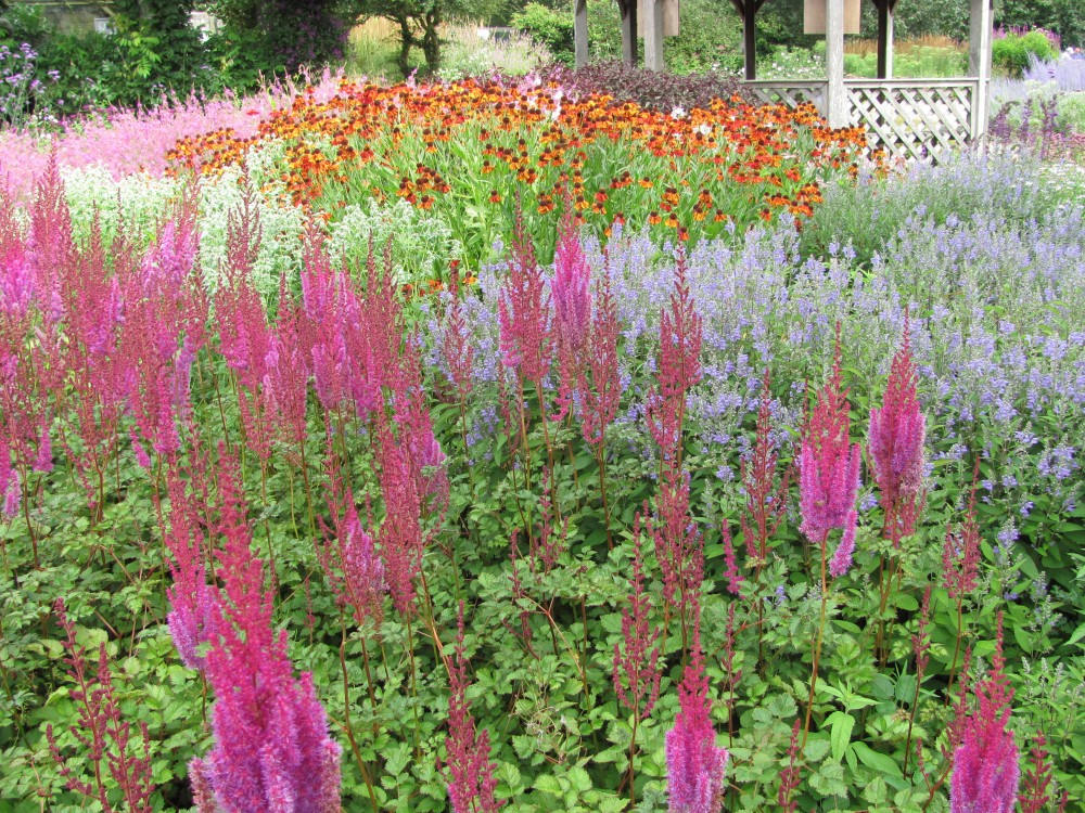 The Gardens of Piet Oudolf (1/6)