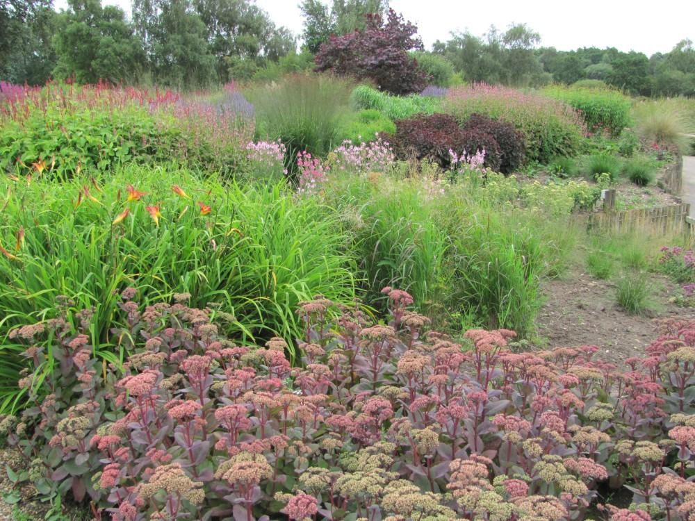 The Gardens of Piet Oudolf (4/6)