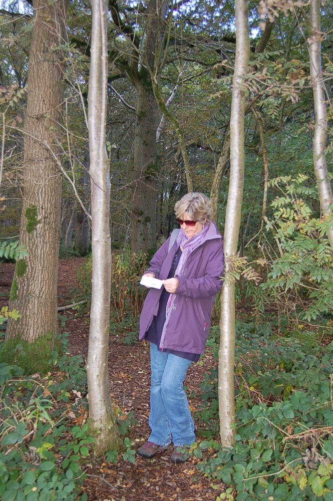 Brown Moss - a Shropshire Wildlife Gem (4/6)