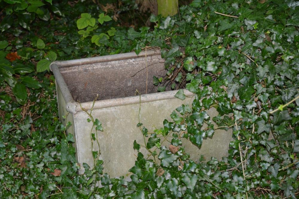 Aulden Farm Gardens - Part 2 (5/6)