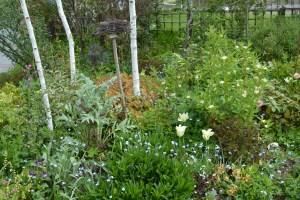 ngs garden-019