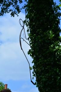 orchardcottage-02